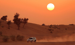 Evening  deser-safari abudhabi