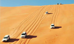 Liwa Full Day Tour